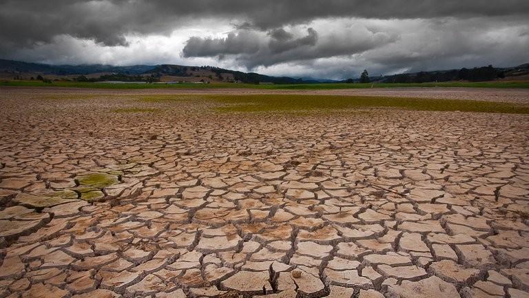 ALERTAN QUE LAS ACCIONES CONTRA EL CAMBIO CLIMÁTICO NO SON SUFICIENTES